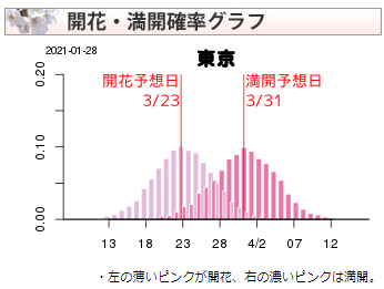 桜の開花・満開確率表示例