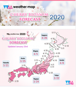 Weather Map issued its first cherry blossom forecast of the season.